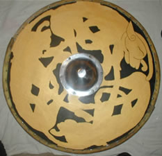 Shield with undercoat